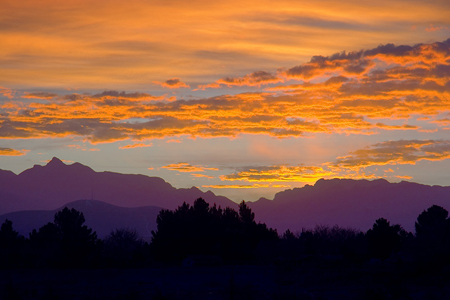 organ mountains at sunset